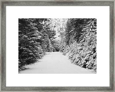 Snowy Mountain Road - Black And White Framed Print by Carol Groenen