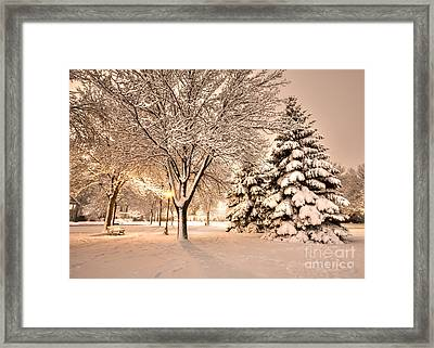 Framed Print featuring the photograph Snowy Night At Windom Park by Kari Yearous