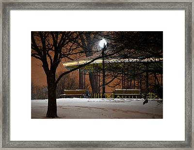 Framed Print featuring the photograph Snowy Night In Leone Riverside Park by Bill Swartwout