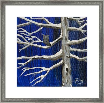 Snowy Night Framed Print by Jaime Haney