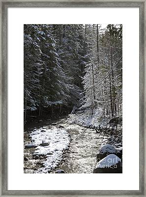 Snowy Oregon Stream Framed Print by Peter French