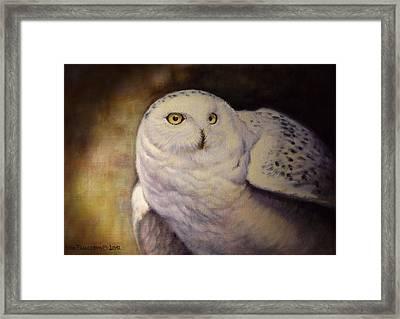 Snowy Owl Framed Print by Anna Franceova