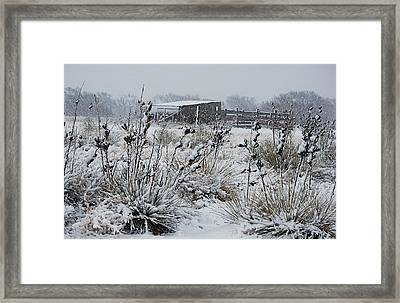 Snowy Pasture Framed Print by Melany Sarafis