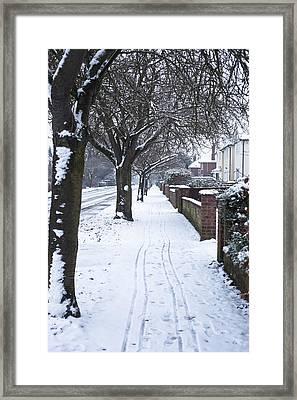Snowy Path Framed Print by Tom Gowanlock
