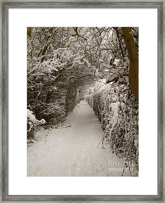 Framed Print featuring the photograph Snowy Path by Vicki Spindler