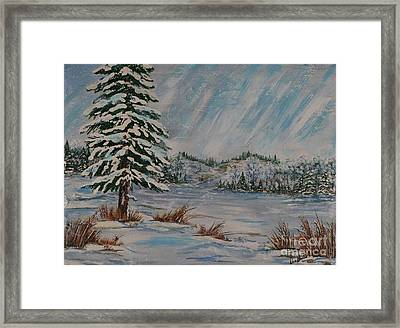 Snowy Pine Framed Print by Doreen Karales Zonts