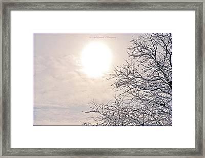 Snowy Radiance Framed Print