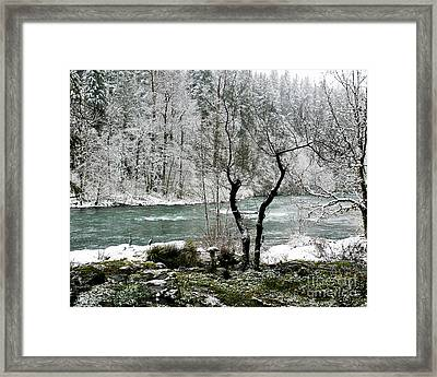 Framed Print featuring the photograph Snowy River And Bank by Belinda Greb