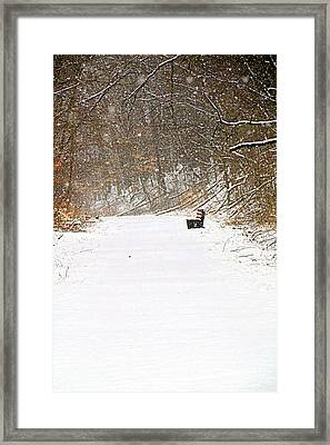 Snowy Seat Framed Print by Andrea Dale