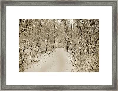 Snowy Sepia Framed Print