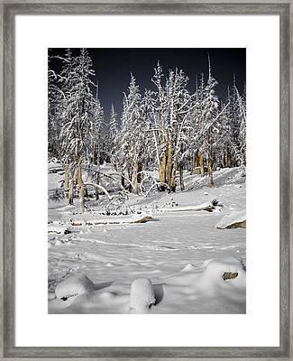 Snowy Silence Framed Print by Chris Brannen