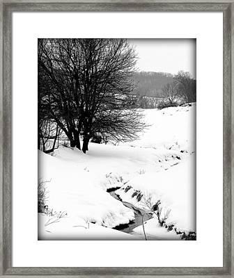Snowy Stream Framed Print by Alexandra  Rampolla