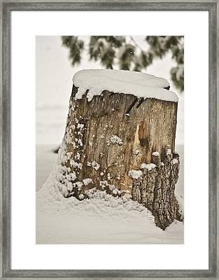 Snowy Stumptown Framed Print