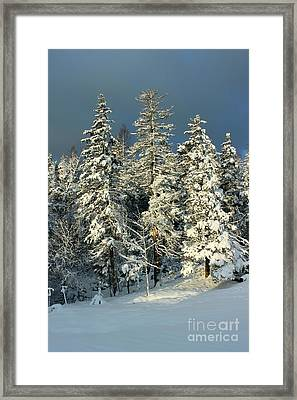 Snowy Sunrise Framed Print
