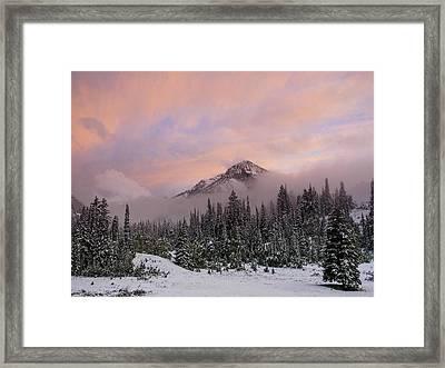 Snowy Surprise Framed Print