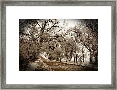 Snowy Trail Framed Print by Shirley Heier