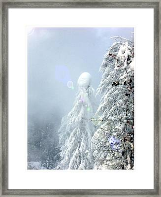 Snowy Trees Framed Print by Kae Cheatham