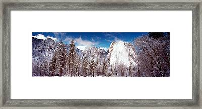 Snowy Trees With Rocks In Winter Framed Print by Panoramic Images