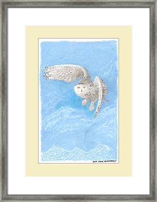 Snowy White Owl Art Framed Print by Jack Pumphrey