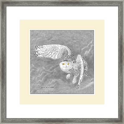 Snowy White Owl Drawing Framed Print by Jack Pumphrey