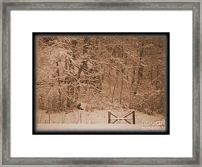 Snowy Woods In Bronze Framed Print by Jamie Mcclellan Elsner