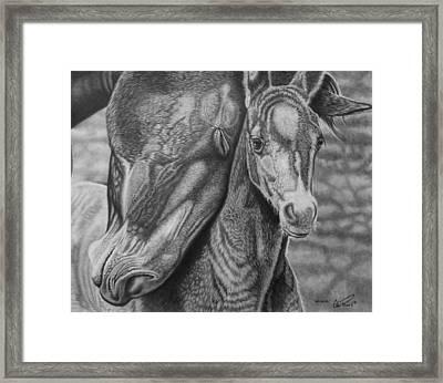 Snuggles Framed Print by Glen Powell