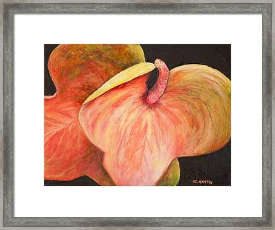Snuggling Anthuriums Framed Print by Annie St Martin