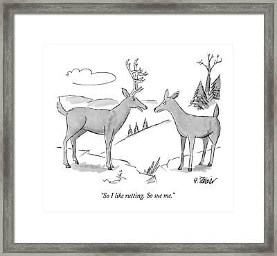 So I Like Rutting.  So Sue Me Framed Print