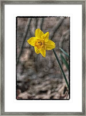 So Many Promises Yet Unsaid Framed Print by Kimberleigh Ladd