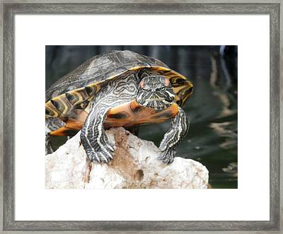 So My Girlfriend Thinks I Need Another Tattoo Framed Print by Belinda Lee