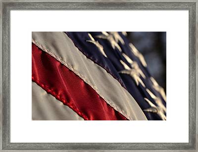 So Proudly We Hail Framed Print by Larry Bishop