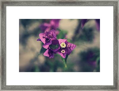 So Real That It Makes Me Wanna Cry Framed Print by Laurie Search