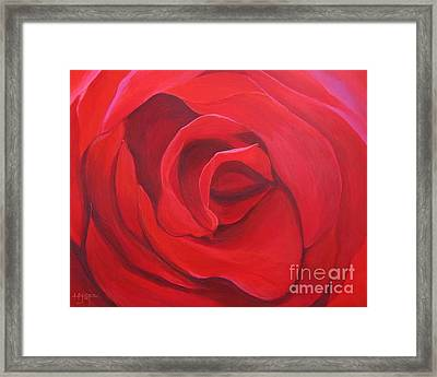 So Red The Rose Framed Print