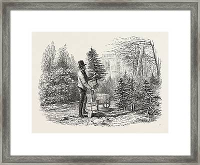 So The Little Fir-tree Went Off In Its Wheelbarrow Framed Print by English School