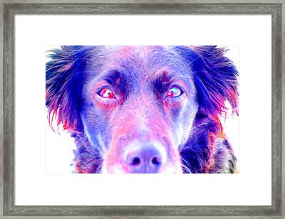 your love is so true because I see I can believe in it  Framed Print