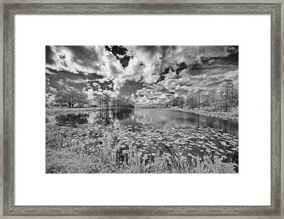 So You See It Framed Print by Jon Glaser