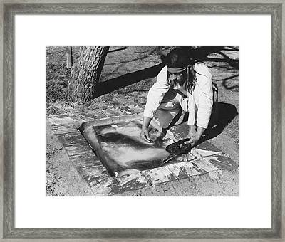 Soaking A Bear Hide Framed Print