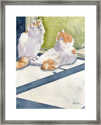 Soaking Up Some Rays Framed Print by Marsha Elliott