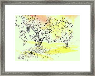 Soaking Up The Sunset Framed Print
