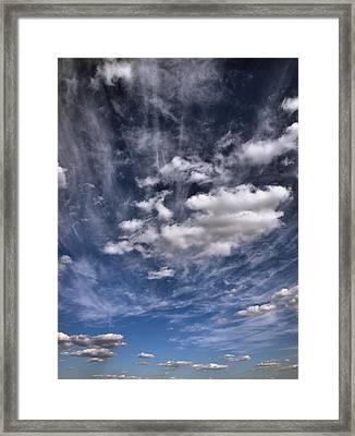 Soar  Framed Print by Tom Druin