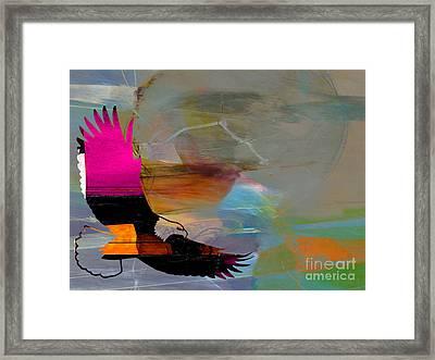 Soaring Eagle Framed Print