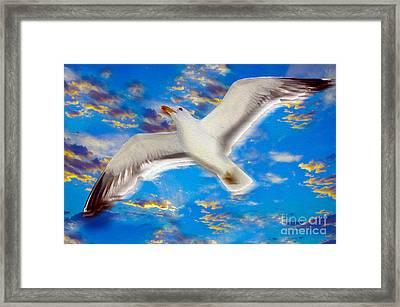 Soaring Framed Print by Jon Neidert