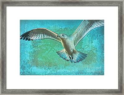 Soaring On Lifes Air Drafts Framed Print by Deborah Benoit