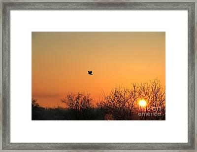 Soaring Sunrise 1 Framed Print by Jay Nodianos