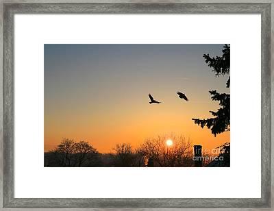 Soaring Sunrise 3 Framed Print by Jay Nodianos