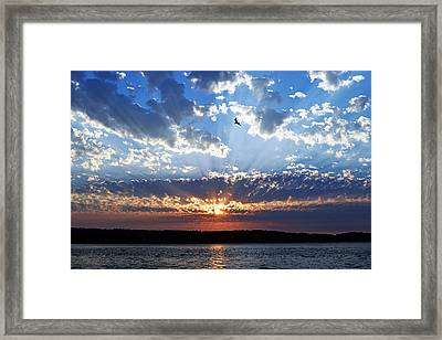 Framed Print featuring the photograph Soaring Sunset by Anthony Baatz