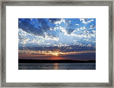 Soaring Sunset Framed Print