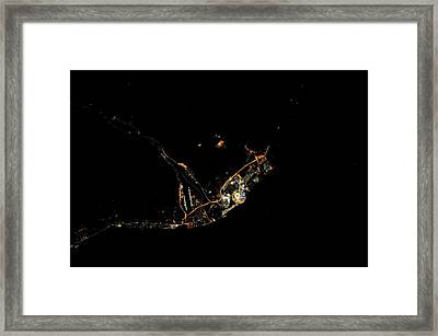 Sochi Olympic Park At Night From Space Framed Print by Nasa