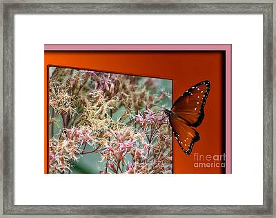 Social Butterfly 03 Framed Print by Thomas Woolworth