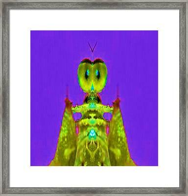 Social Butterfly Framed Print